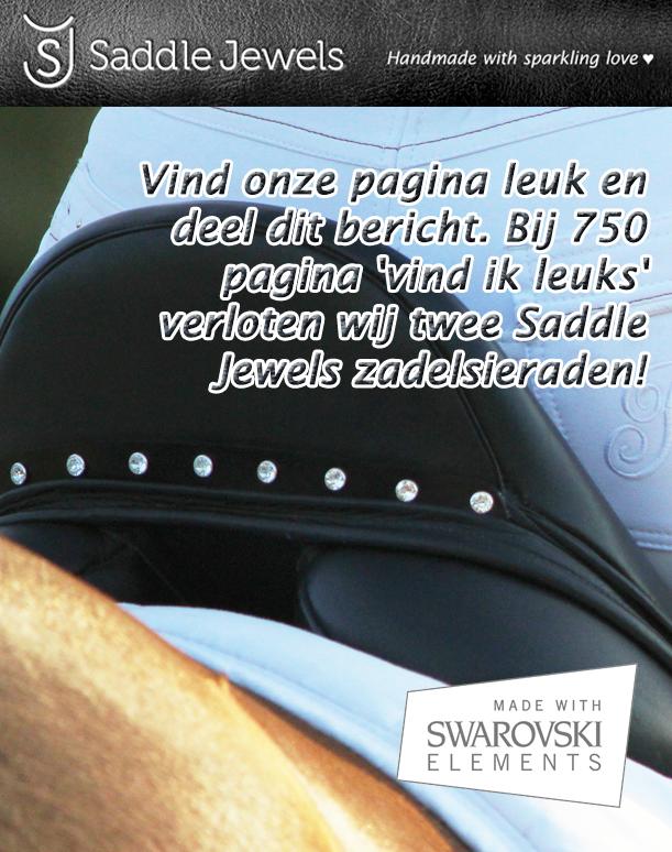 Facebook – Saddle Jewels